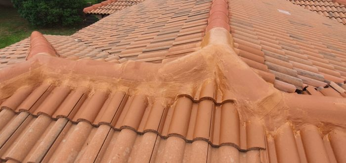 Roof Ridge Waterproofing 4
